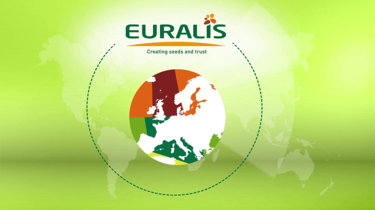 Группа Евралис