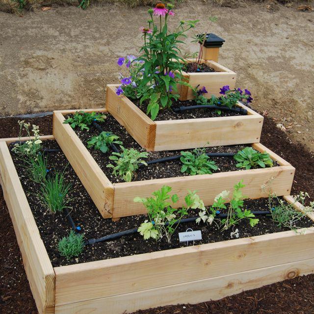 Cajones para cultivar, huertos decorativos