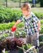 Riego en el huerto: Cuándo regar, cuánto regar y cómo regar