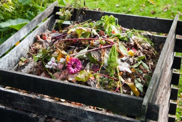 lucha integrada y prevención de enfermedades: hacer compost casero para un huerto sano