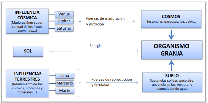 Influencias externas en el Organismo Granja