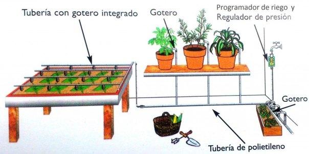 Huerto en un patio: Instalación de riego por goteo.