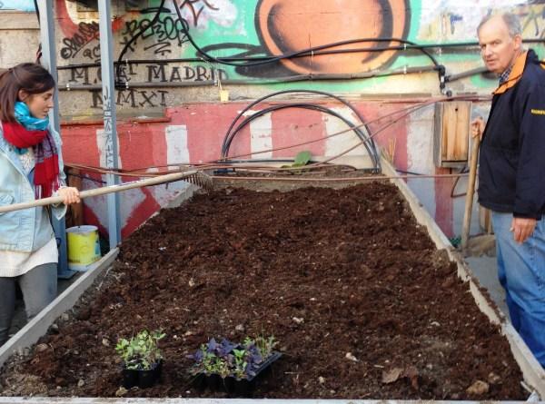 Mesa de cultivo con compost