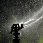 Riego por aspersión: ventajas e inconvenientes en el huerto
