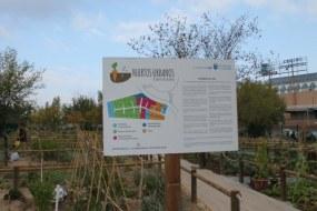 Huertos en Alcobendas. Una iniciativa municipal