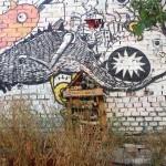 Visita al huerto de «Esta es una Plaza» en Lavapiés