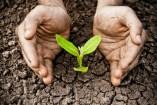Qué es la Agricultura Regenerativa: Todo lo que debes saber