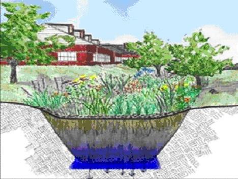 Estructura de los huertos de lluvia (Fuente: www.sciotogardens.com)