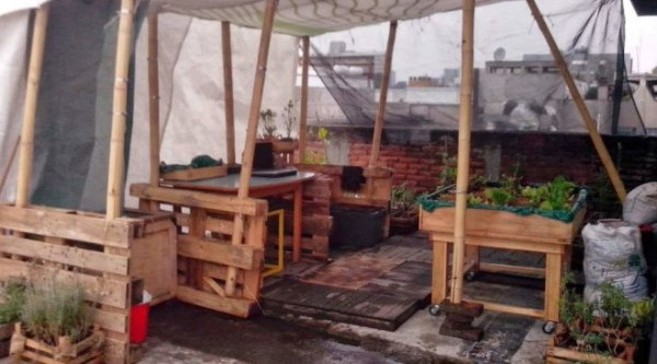Azotea de SomosMexas donde se realizan actividades sobre agricultura ecológica (Fuente: www.timeooutmexico.mx)