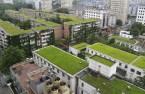 Cubiertas Vegetales y Jardines Verticales. Qué son y qué beneficios tienen
