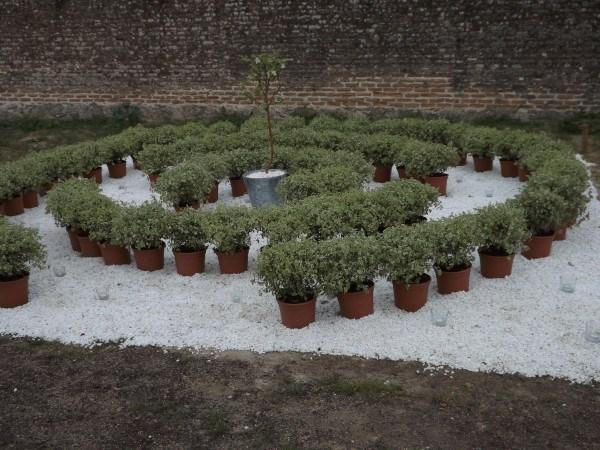 """""""Un jardín para encontrarse"""" diseñado por Liquen Paisajismo"""