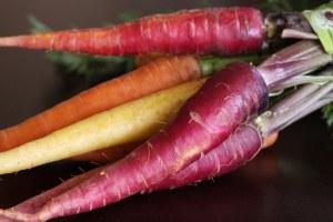 Cómo cultivar Zanahorias paso a paso: Siembra, cosecha y otros