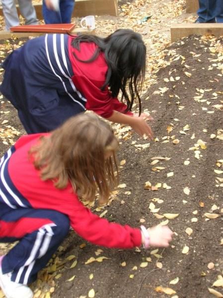 Los niños son los que se encargan de cuidar el huerto