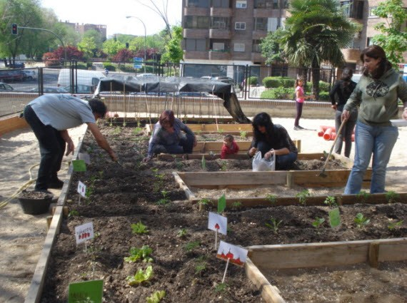 Preparación del Huerto urbano Siglo XXI en Moratalaz