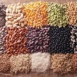 Cómo obtener semillas en casa para plantar: Guía completa