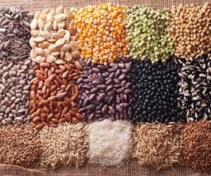 obtener semillas en casa
