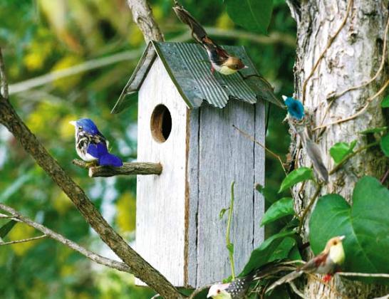 Además de servir de nido a las aves del lugar, es un elemento decorativo perfecto para el jardín