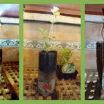 Cómo fabricar Macetas con Autorriego recicladas: Guía completa