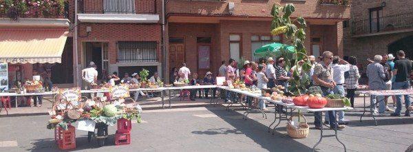 Montaje de la Feria del Hortelano en Navarrevisca
