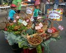 Turismo Sostenible en Navarrevisca【Feria del Hortelano | Feria de Ganado】