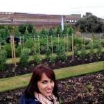 Comer del Huerto: Kew on a Plate Kitchen Garden