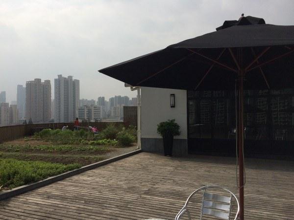 Aquí podemos ver la terraza del bar y a la izquierda el rooftop farm perdido en un mar de edificios.