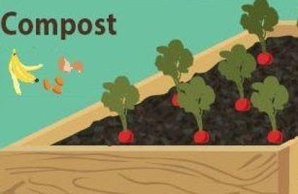 tipos de mulching o acolchados con compost