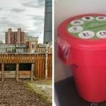 Compost de Jardín ¿Qué es el compost? Y otras 6 preguntas y respuestas