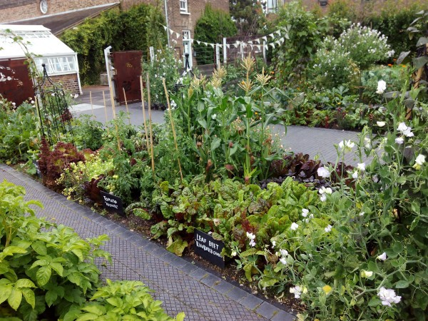 The Kew Guild Student Vegetable Plots