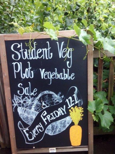 Venta de verduras cultivadas por los estudiantes