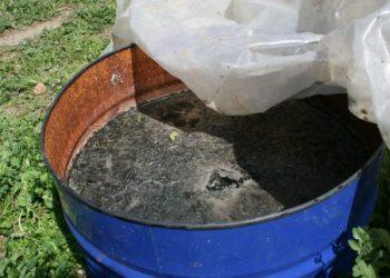Plaguicida orgánico en maceración hecho a base de cola de caballo