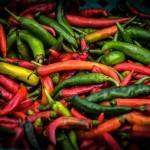 Plantar Pimientos en el Huerto Paso a Paso: Guía completa
