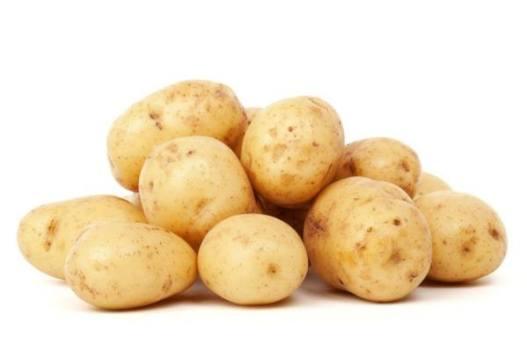 Cultivo de patatas ecológicas en el huerto