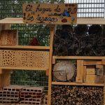 Criar insectos beneficiosos en el huerto: El hogar de los insectos