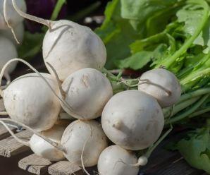 Cultivar nabos en el huerto