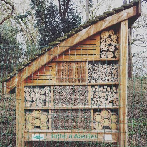Hogar artificial abejas