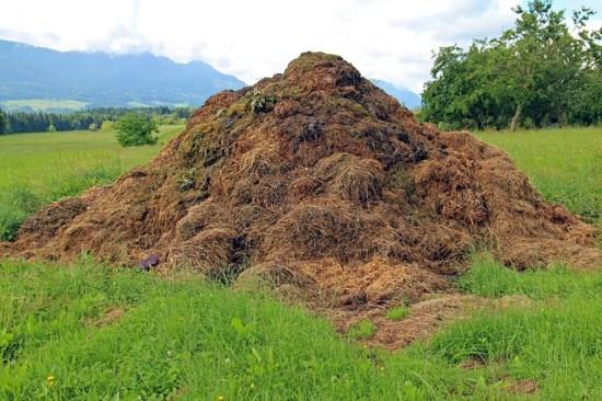 cómo hacer compost en montón