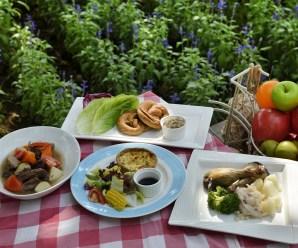 Técnicas ecológicas: beneficios de los alimentos eco