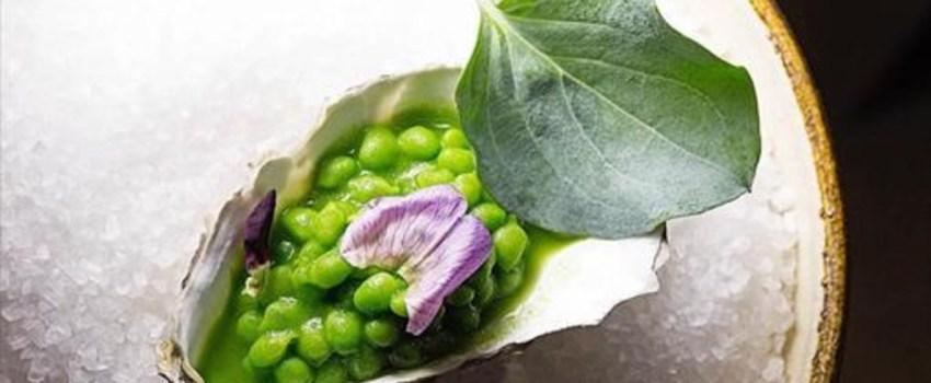 El Guisante Lágrima: ¿Por qué es el Caviar Verde del huerto?