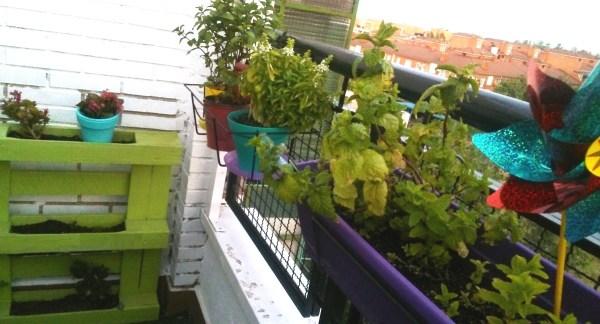 Jardineras y huerto vertical con palé en el balcón