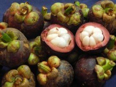 Mangostin, a nobre fruta da rainha
