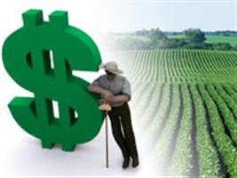 Novas regras beneficiam produtores, diz secretário do Mapa