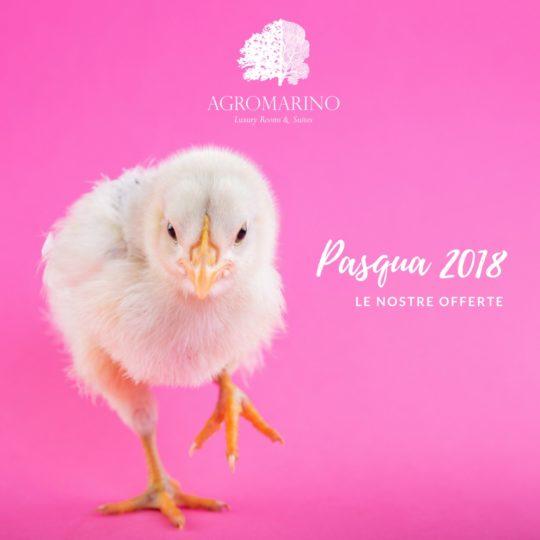 2018-agromarino-offerta-pasqua