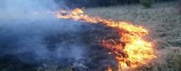 sterpaglie-incendio