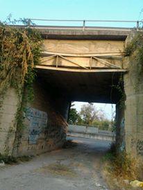 ponte 1