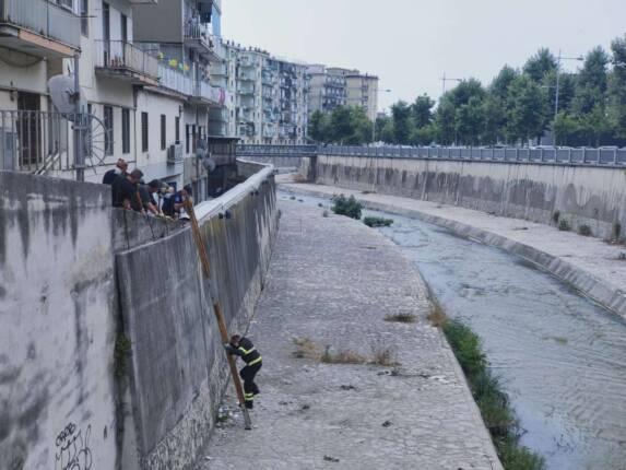 fiume-irno-furto-banca