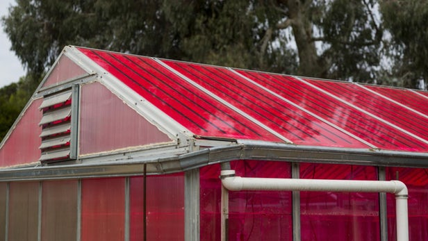 Invernaderos que producen electricidad
