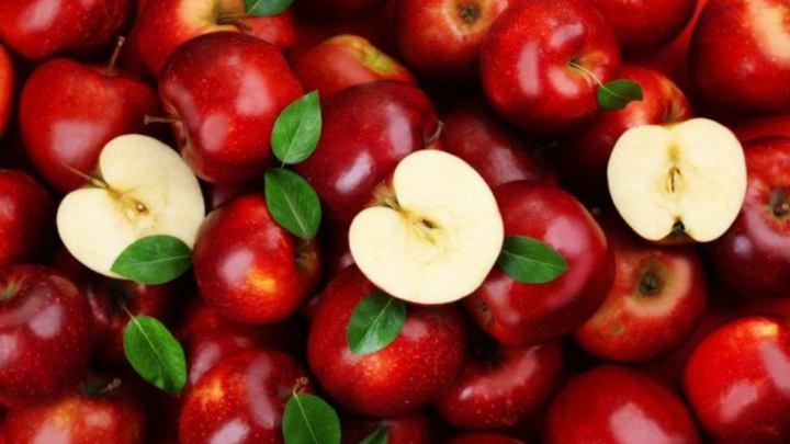 Se pueden reducir las pérdidas en pos-cosecha de manzanas y remolacha azucarera