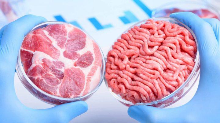 ¿Estamos listos para comer carne cultivada en laboratorio?