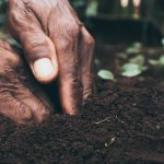 Coping Strategies for Farmers